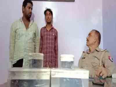 शातिर अपराधियों को नशीले पाउडर में जेल भेजा